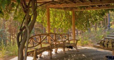 פרגולות מעץ גושני